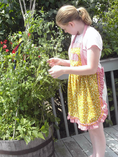 Sw_katie picking peas